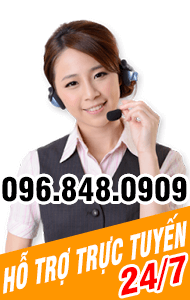 hỗ trợ hotline site ngoinhahanhphuc.vn