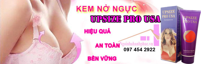 kem nở ngực breast success