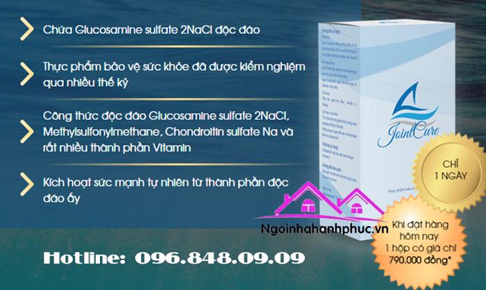 Đối tượng sử dụng Joint Cure